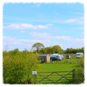 Camping Holidays Suffolk Moat Farm