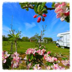 Moat Farm Campsite Kenton Suffolk